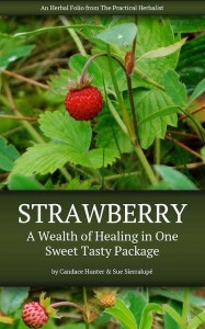 Strawberry-Folio-Cover-little