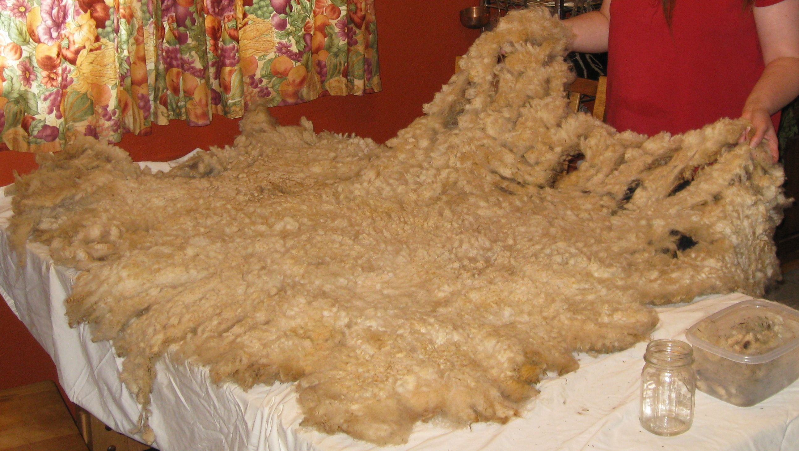 Washing Fleece