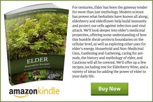 Elder-Book-End-Ad