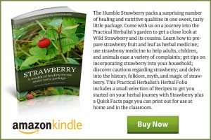 Strawberry-Book-End-Ad