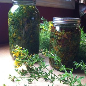 Saint John's Wort Magic: Balm Of Protection Recipe