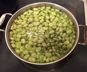 Parboil Fava or Broad Beans for 2 minutes.