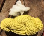 Here's a few locks of the original corridale fiber next to my carrot-dyed handspun yarn.