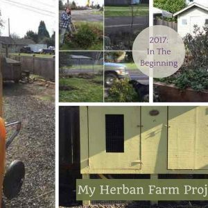 My Herban Farm Project: Rationale For Urban Farming Right Now