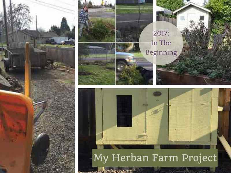 My Herban Farm Project