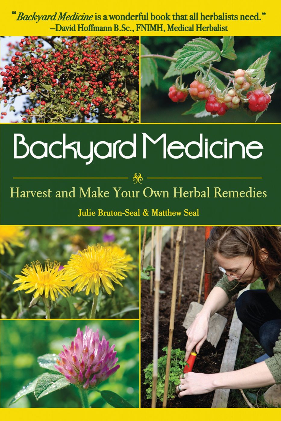 Backyard Medicine By Julie Brunton-Seal And Matthew Seal