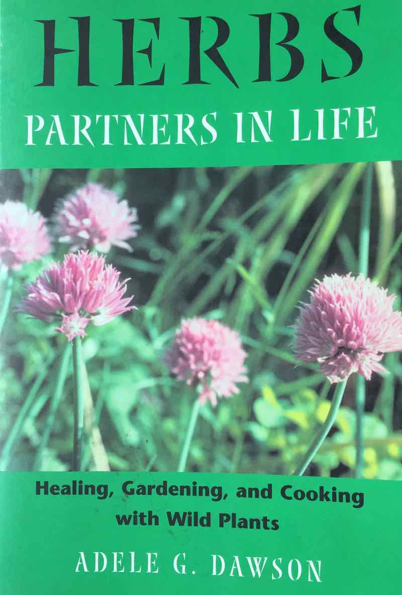 Herbs Partners In Life By Adele Dawson