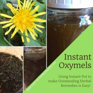 Pressure Cooking Magic: Making Herbal Remedies With Instant Pot, Oxymels