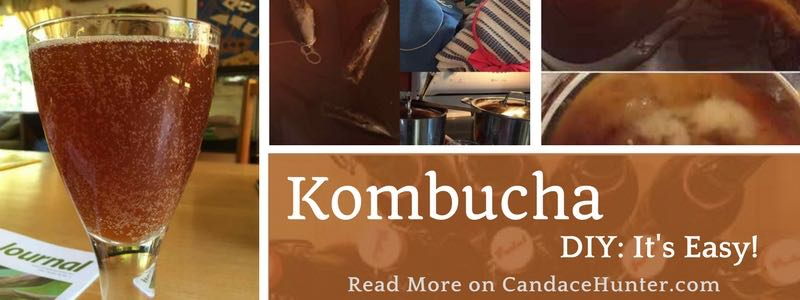 Kombucha: What Is It And Easy DIY