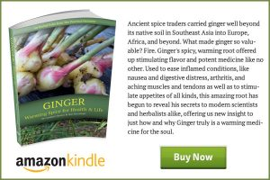 Ginger-Book-End-Ad