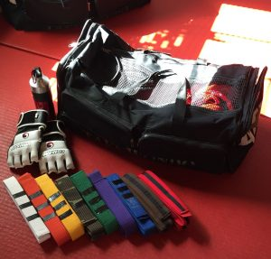 Taekwondo Gear and Belts: Determination!