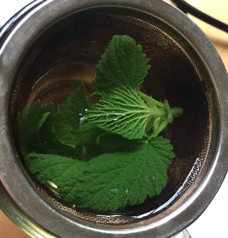 Nettle Magic: Nurturing Yourself