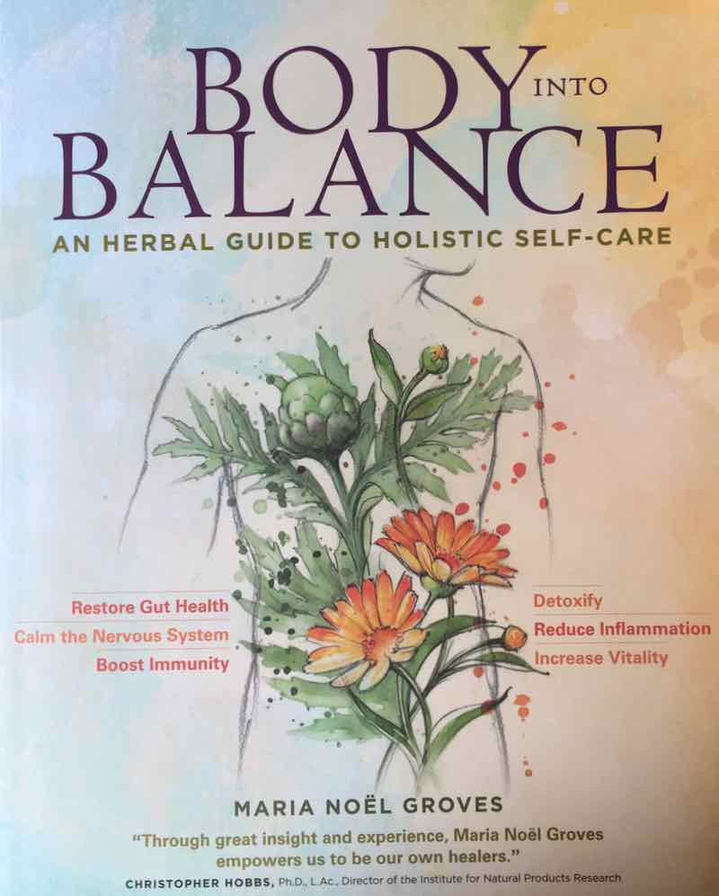 Body Into Balance By Maria Noel Groves