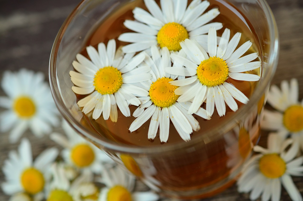Flu Remedy? Try Chamomile To Ease Stomach And Cool The Burn